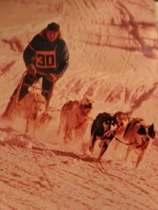 Kearney Dog Sled Races History