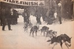 Kearney Dog Sled Races History
