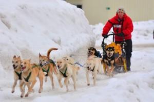 Kearney Dog Sled Races Press Release