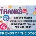 Raven's Watch