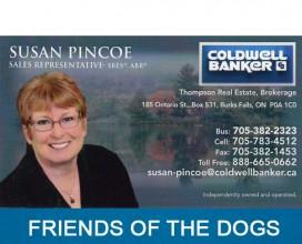 Susan Pinco Coldwell Banker