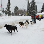 Kearney Dog Sled Races