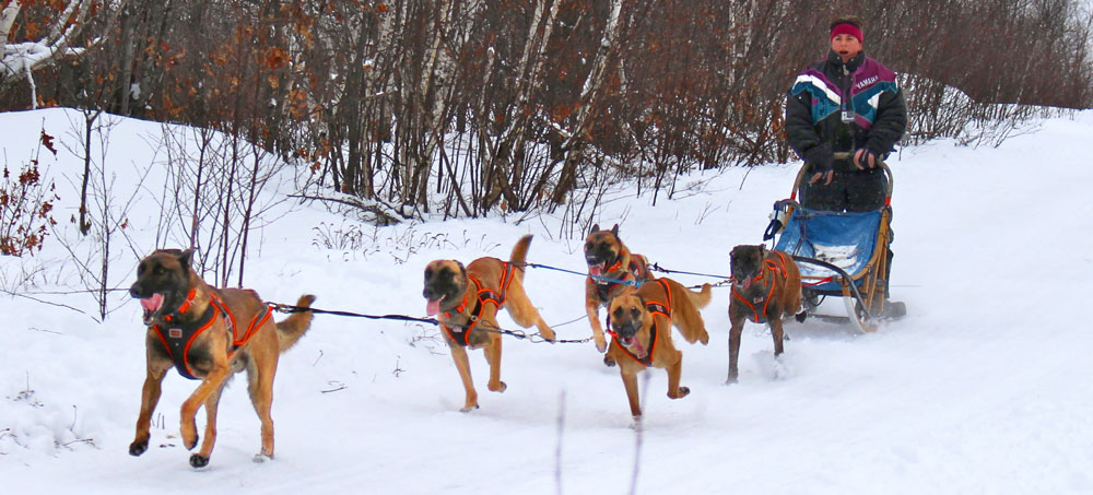 Musher Registrations