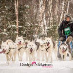 2015 Kearney Dog Sled Races by Desiree Nickerson Photography