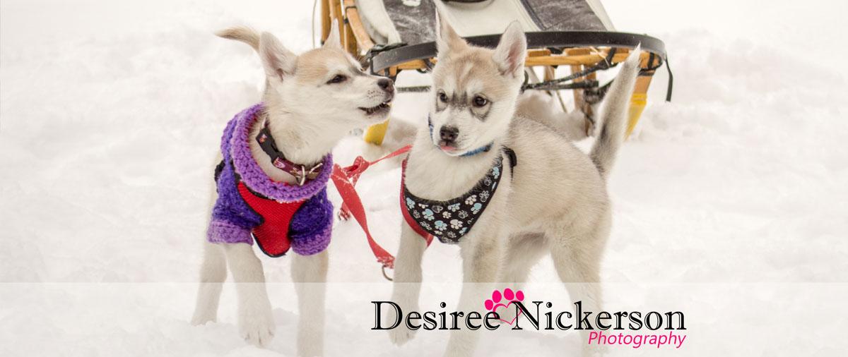 Desire Nickerson Photography