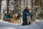 'Dog Sled Rides' from the web at 'http://kearneydogsledraces.ca/wp-content/uploads/2016/02/SugarDogs-Adventure-Company-Dogsled-Rides-150x100.jpg'