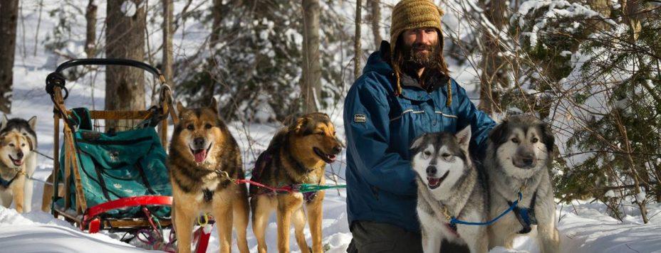 Sugardogs dogsled rides
